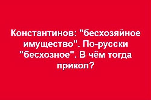 Дмитрий Киселев «положил глаз» на Тихую бухту