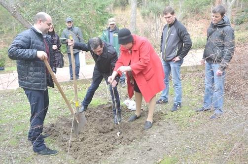 В парке «Монтедор» теперь растёт дуб – потомок дерева, посаженного Петром I