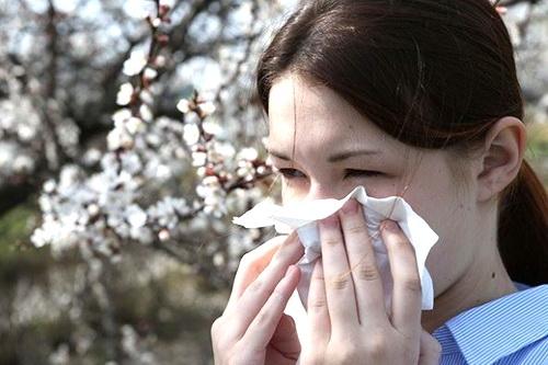 В Крыму начался период сезонной аллергии