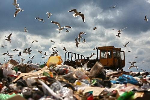 Новая метла для нашего мусора