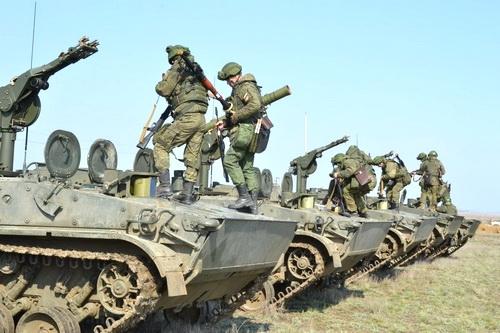 В Крыму расцвела «Хризантема-С»