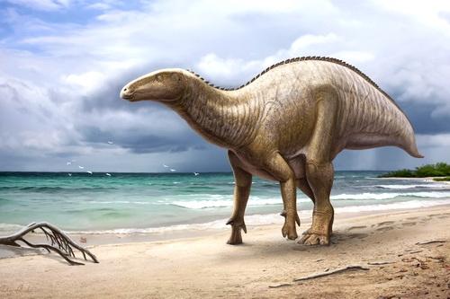 Первый крымский динозавр едет навестить родину