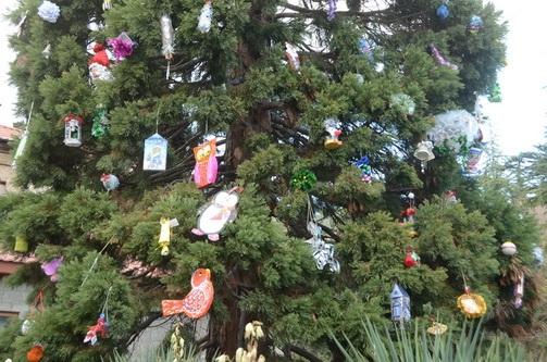В Никитском саду секвойядендрон украсили детскими игрушками ручной работы