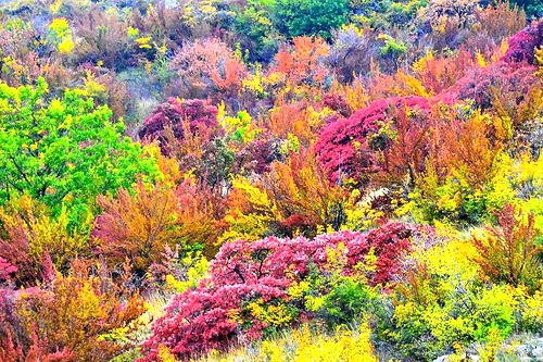 Осень. Пора веселиться