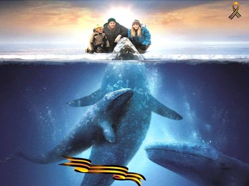 «Три кита мира»