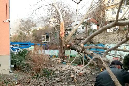 В Ялте оперативно устраняют последствия непогоды