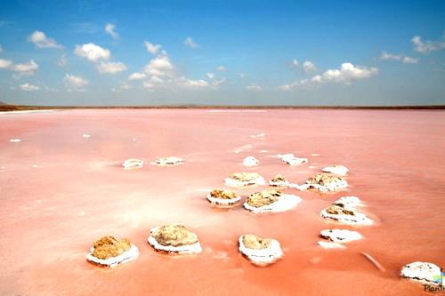 В крымских соленых озерах снизилось содержание радиоактивных изотопов