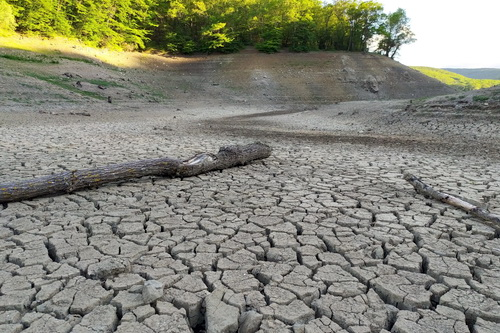 Биоразнообразие Крыма от засухи не пострадает