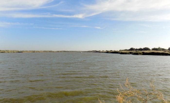 Андрей Мальгин: Проблема воды для нас политическая