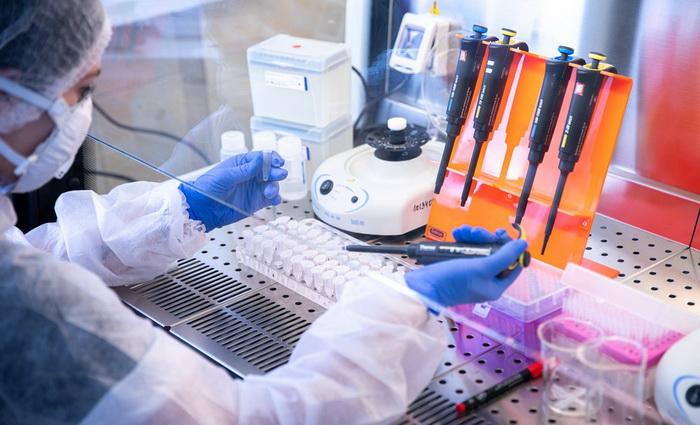 Учёные КФУ дали прогноз распространения коронавируса в Крыму