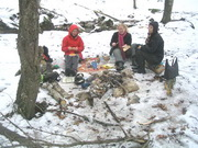 По снежному лесу