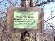Кизил-Кая к 8 Марта