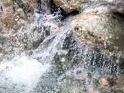 Под восточной кромкой Чатырдага